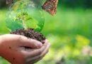 COP15 es exitosa y China toma la iniciativa en biodiversidad, dice funcionaria de la ONU